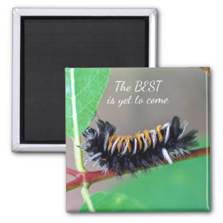 The BEST is Yet to Come Caterpillar Magnet