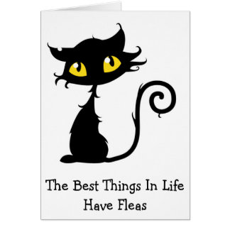 The Best Things In Life Have Fleas Funny Cat Card