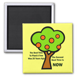 THE BEST TIME TO PLANT TREES MAGNETS