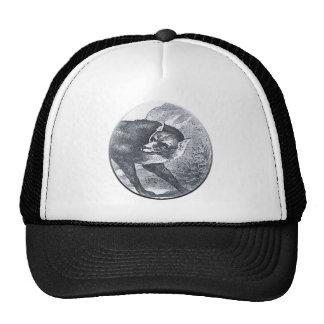 the big bad wolf hats