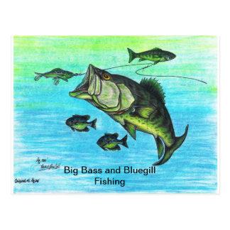 The Big Bass and Bluegill Fishing US Post Card Set