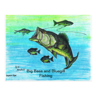 The Big Bass and Bluegill Fishing US Post Card Set