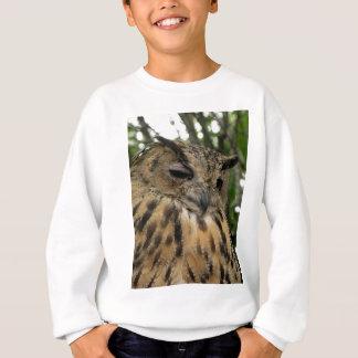 The Big Boo- BuBo BuBo Owl Eagle Owl Series Sweatshirt