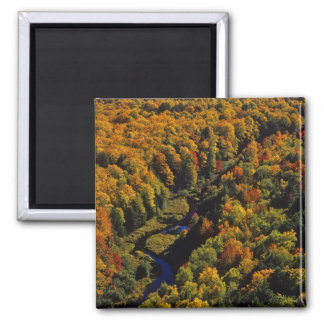 The Big Carp River in autumn at Porcupine 2 Inch Square Magnet