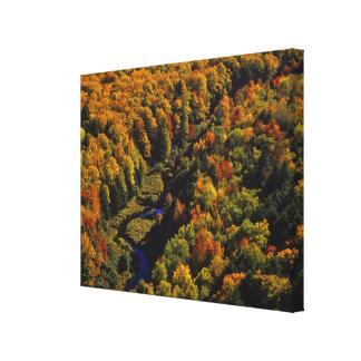The Big Carp River in autumn at Porcupine Canvas Print