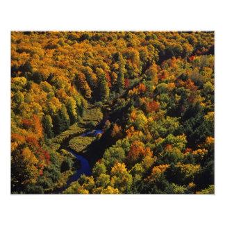 The Big Carp River in autumn at Porcupine Photo
