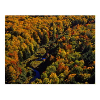 The Big Carp River in autumn at Porcupine Postcard