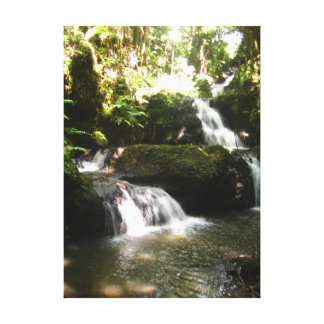 The Big Island Waterfall Canvas