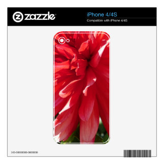 The Big Red iPhone 4S Decal