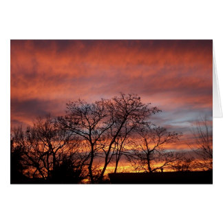 The Big Sky Greeting Cards