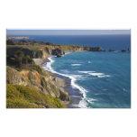 The Big Sur coastline in California, USA Photograph