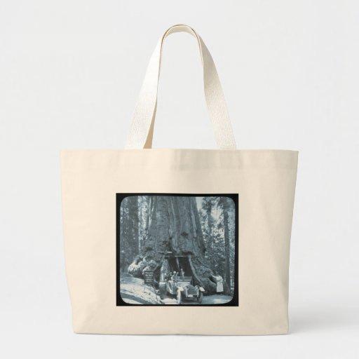 The Big Trees of Mariposa Grove Jumbo Tote Bag