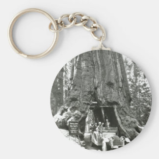 The Big Trees of Mariposa Grove Keychain