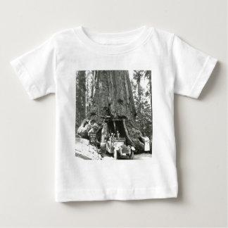 The Big Trees of Mariposa Grove T Shirts