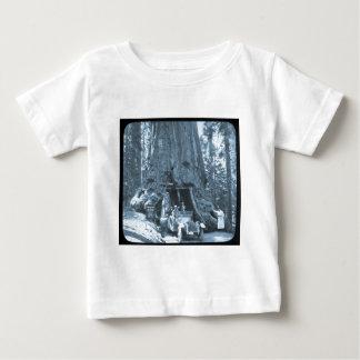 The Big Trees of Mariposa Grove T Shirt