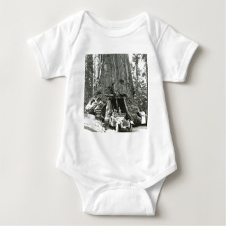 The Big Trees of Mariposa Grove T-shirt
