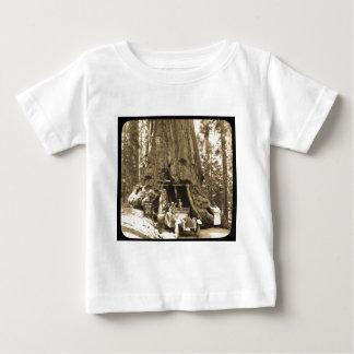 The Big Trees of Mariposa Grove T-shirts