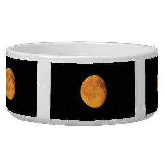 The Big Yellow Moon; No Text Bowl