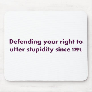 The Bill of Rights is an important document Mouse Pad