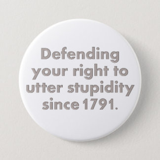 The Bill of Rights is an important document Pinback Button