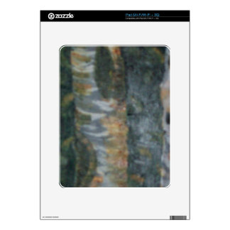 The Birch Forest iPad Skins