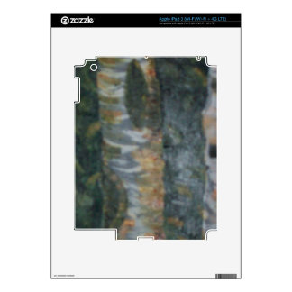 The Birch Woods Decal For iPad 3