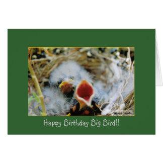 the bird talker, Happy Birthday Big Bird!! Card