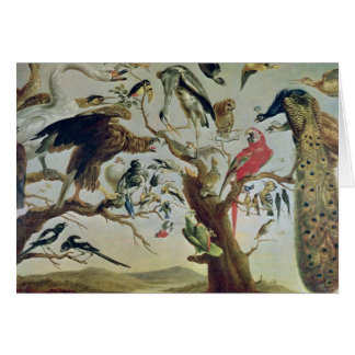 The Bird's Concert Card