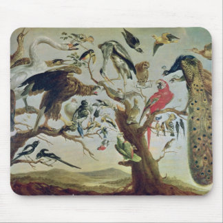 The Bird's Concert Mouse Pad