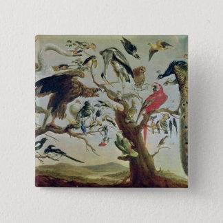 The Bird's Concert Pinback Button