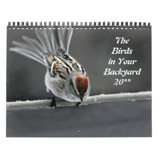 The Birds in Your Backyard Calendar