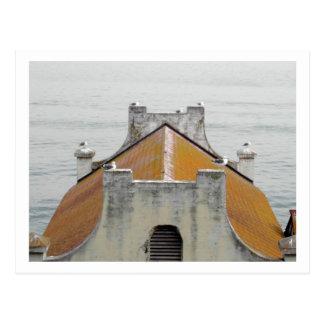 The Birds of Alcatraz Postcard