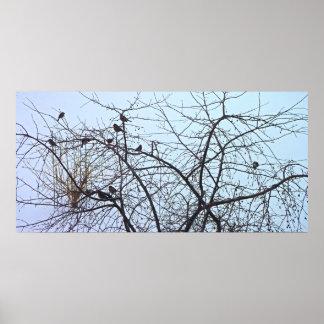 The Birds Print