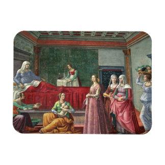 The Birth of St. John the Baptist (fresco) (see al Vinyl Magnets