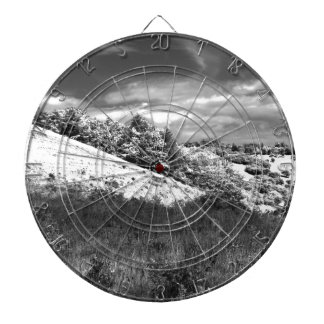 The black and white valley dart boards