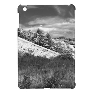 The black and white valley iPad mini covers