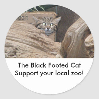 The Black Footed Cat Classic Round Sticker