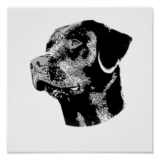 THE BLACK LAB POSTER
