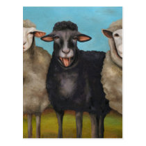 The Black Sheep Postcard