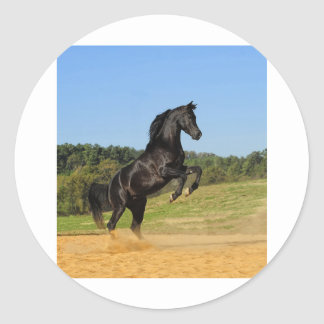 The Black Stallion Classic Round Sticker