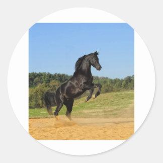 The Black Stallion Classic Round Sticker