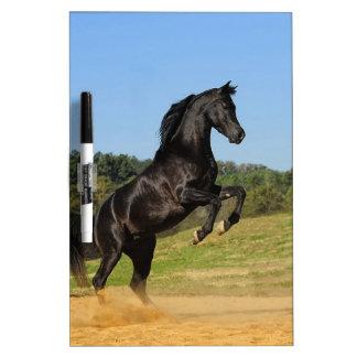 The Black Stallion Dry-Erase Whiteboard