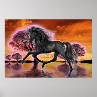The Black Stallion .. fantasy image Poster
