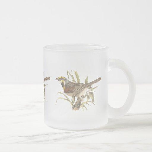 The Black-throated Bunting (Emberiza americana) 10 Oz Frosted Glass Coffee Mug