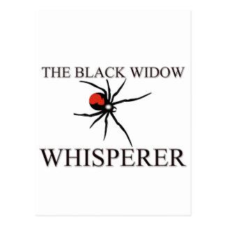 The Black Widow Whisperer Postcard