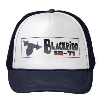 The Blackbird Trucker Hat
