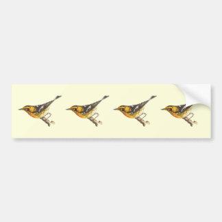 The Blackburnian Warbler(Sylvicola blackburniae) Bumper Sticker