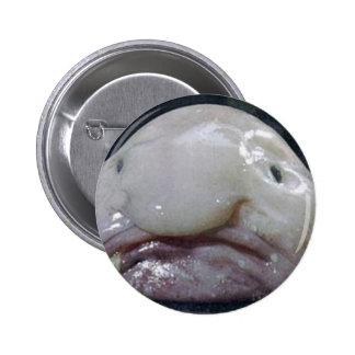 The Blobfish Button