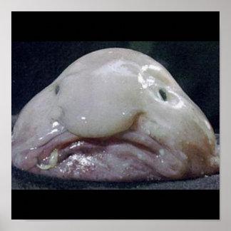 The Blobfish Poster