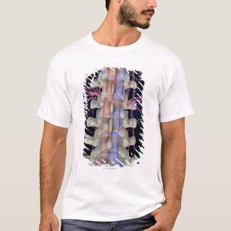 The blood supply of lumbar vertebrae T-Shirt